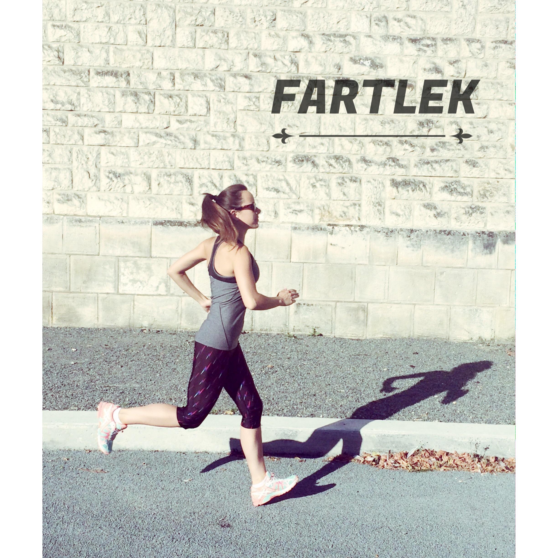 fratlek preparation physique
